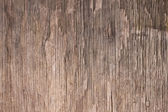 Old brown rotten wood texture. — Stock Photo