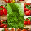 Tomato and vegetables — Stock Photo