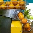 Orange squeezer - Stock Photo