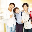 Happy schoolboys — Stock Photo #6771450