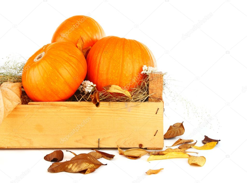 Pumpkins & dry leaves isolated on white — Stock Photo #6819357