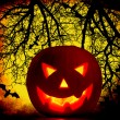 Royalty-Free Stock Photo: Halloween pumpkin background