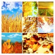 Autumn nature collage - Stock Photo