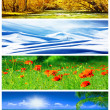 Four seasons collage — Stock Photo