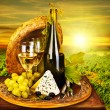 Stock Photo: Wine and cheese romantic dinner outdoor