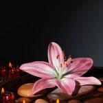 Zen atmosfer spa Salonu — Stok fotoğraf