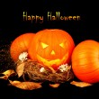 Happy Halloween - Stock fotografie