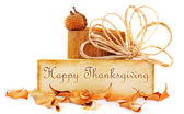 Thanksgiving card — Foto de Stock