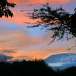 Sunrise on mount Kilimanjaro — Stock fotografie