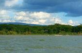Excursion on the lake Naivasha — Stock Photo