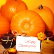 Thanksgiving holiday card — Stock Photo #7209184