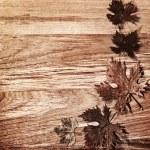 Autumn leaves border over wood background — Stock Photo #7241474