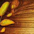 Royalty-Free Stock Photo: Autumn leaves over old wood background