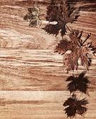 Sonbahar sınır ahşap arka plan üzerinde bırakır — Stok fotoğraf