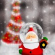 Snow globe Santa Claus, Christmas tree decoration - Stock Photo