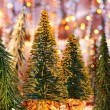 Christmas tree forest - Stok fotoğraf