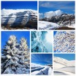 Winter collage - Stok fotoğraf