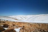 Snow landscape — Zdjęcie stockowe