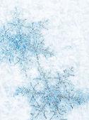 Schneeflocke Hintergrund — Stockfoto