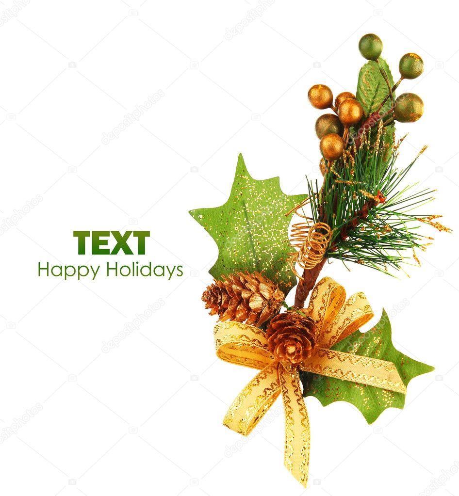 Christmas tree branch ornament as winter holiday decoration isolated on white background — Стоковая фотография #7666184