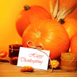 Stock Photo: Thanksgiving holiday decoration