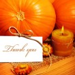 thank you, thanksgiving greeting card — Stock Photo