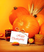 Thanksgiving holiday decoration — Stock Photo