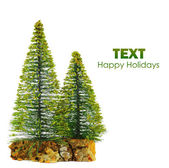 Beautiful isolated Christmas tree — Stock Photo