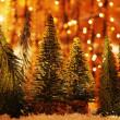 Christmas tree forest — Stock fotografie