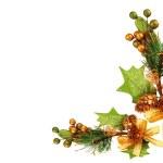 ornamento de la rama del árbol de Navidad — Foto de Stock