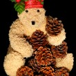 Teddy Bear - Photo