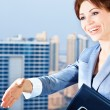 Successful businesswoman — Stockfoto #7906487