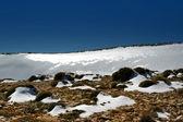 Snö landskap — Stockfoto