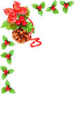 Holly berry Cristmas border — Stock Photo