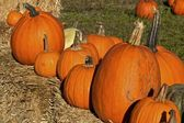Pumpkins on a hay bale — Stock Photo