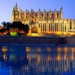 Cathedral of Palma de Mallorca La Seu night view — Stock Photo #6821445