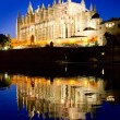 Cathedral of Palma de Mallorca La Seu night view — Stock Photo #6821492