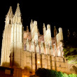 Cathedral of Palmde MallorcLSeu night view — Stock Photo #6821592