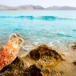 Amphora roman with marine fouling in Mediterranean — Stock Photo #6822014