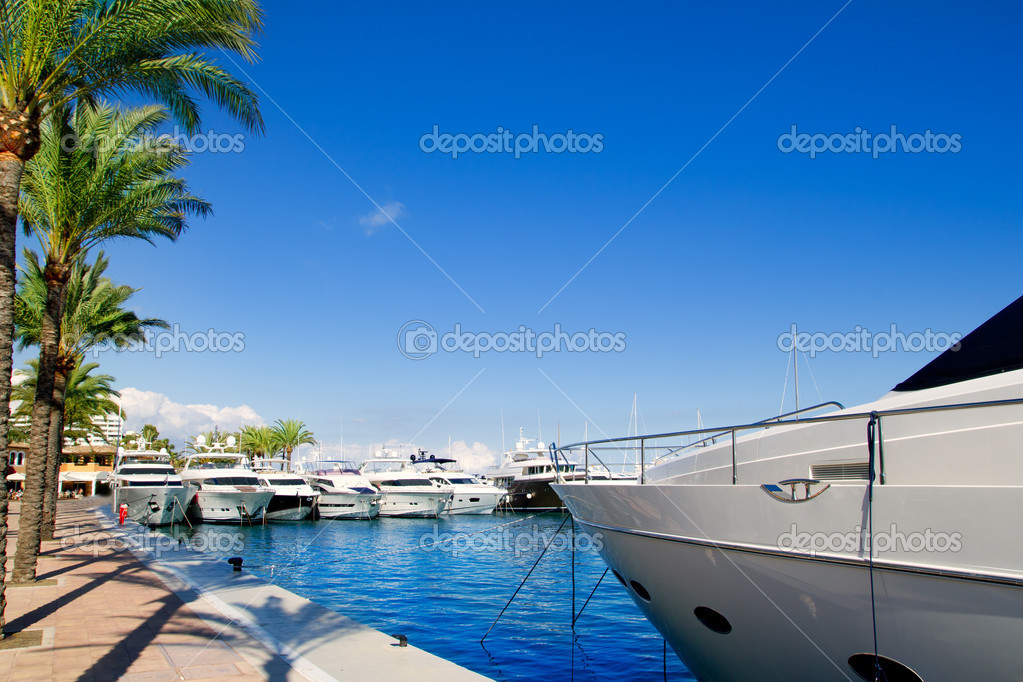 Calvia Puerto Portals Nous luxury yachts in Majorca Balearic island from Spain  Stock Photo #6820850