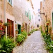 Majorca Valldemossa typical with flower pots in facade - Stock Photo