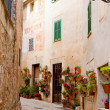 Majorca Valldemossa typical with flower pots in facade — Stock Photo #6836123