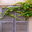 Majorca traditional wood windows mallorquina shutters — Stock Photo #6836164