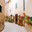Majorca Valldemossa typical with flower pots in facade — Stock Photo #6836247