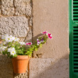 Plants pots in Valldemossa at Majorca Balearic island — Stock Photo