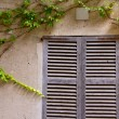Majorca traditional wood windows mallorquina shutters — Stock Photo #6836695