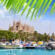 Majorca la Seu cathedral view from marina port of Palma — Stock Photo #6837255
