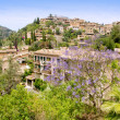 deia typical stone village in majorca tramuntana — Stock Photo