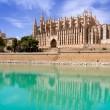 Royalty-Free Stock Photo: Majorca La seu Cathedral and Almudaina from Palma
