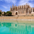 Majorca La seu Cathedral and Almudaina from Palma — Stock Photo #6837528